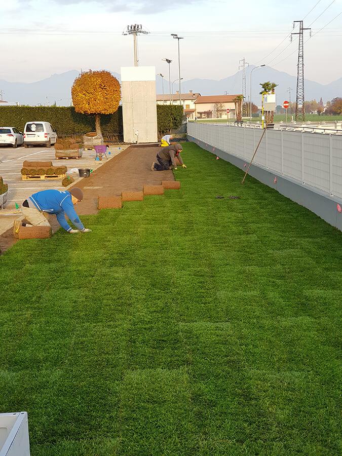 progettazione-realizzazione-giardini-caldogno-verde-blu-giardini-2
