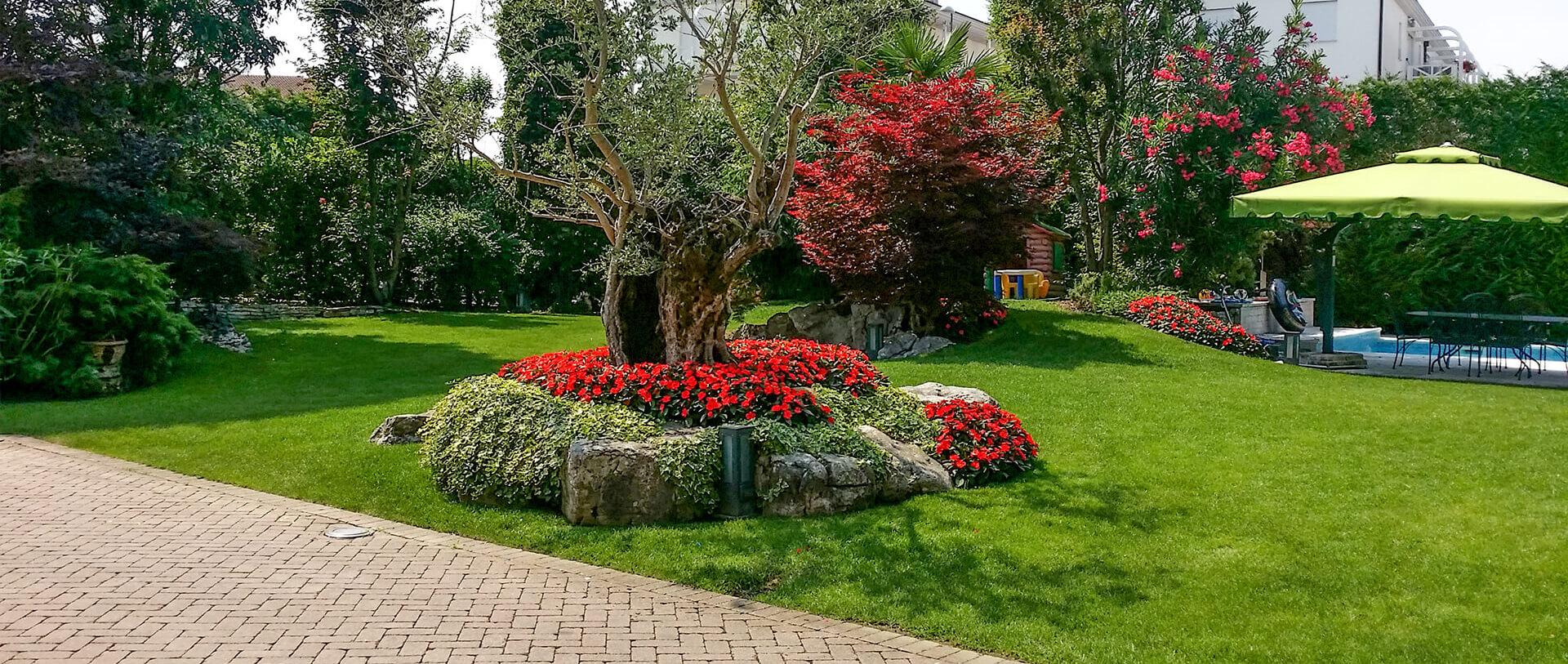 realizzazione e manutenzione giardini vicenza - verde blu