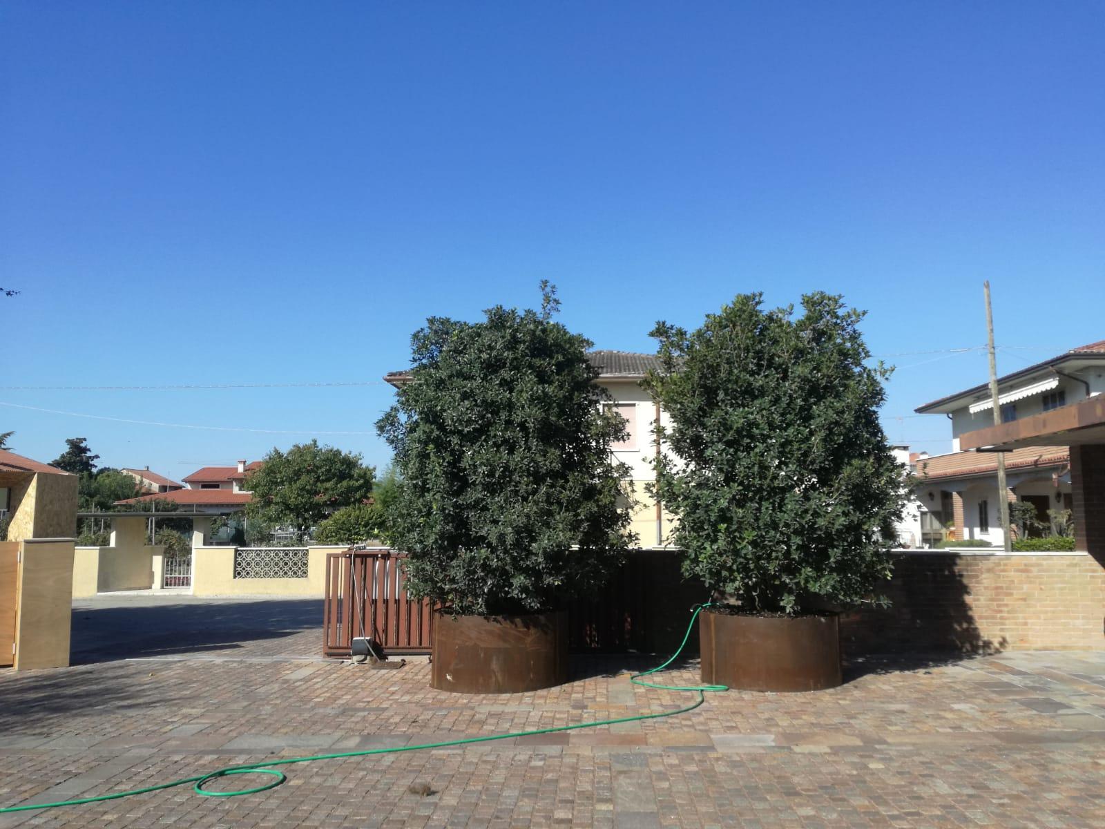 progettazione realizzazione giardini sandrigo - verde blu giardini 14