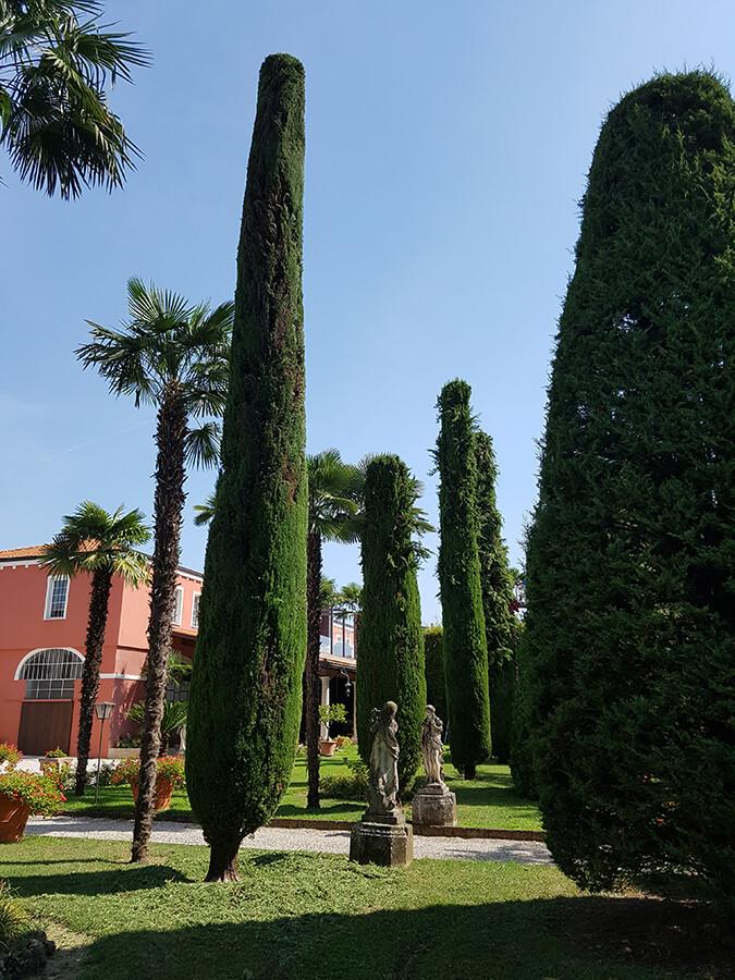 potatura piante verde blu giardini 5