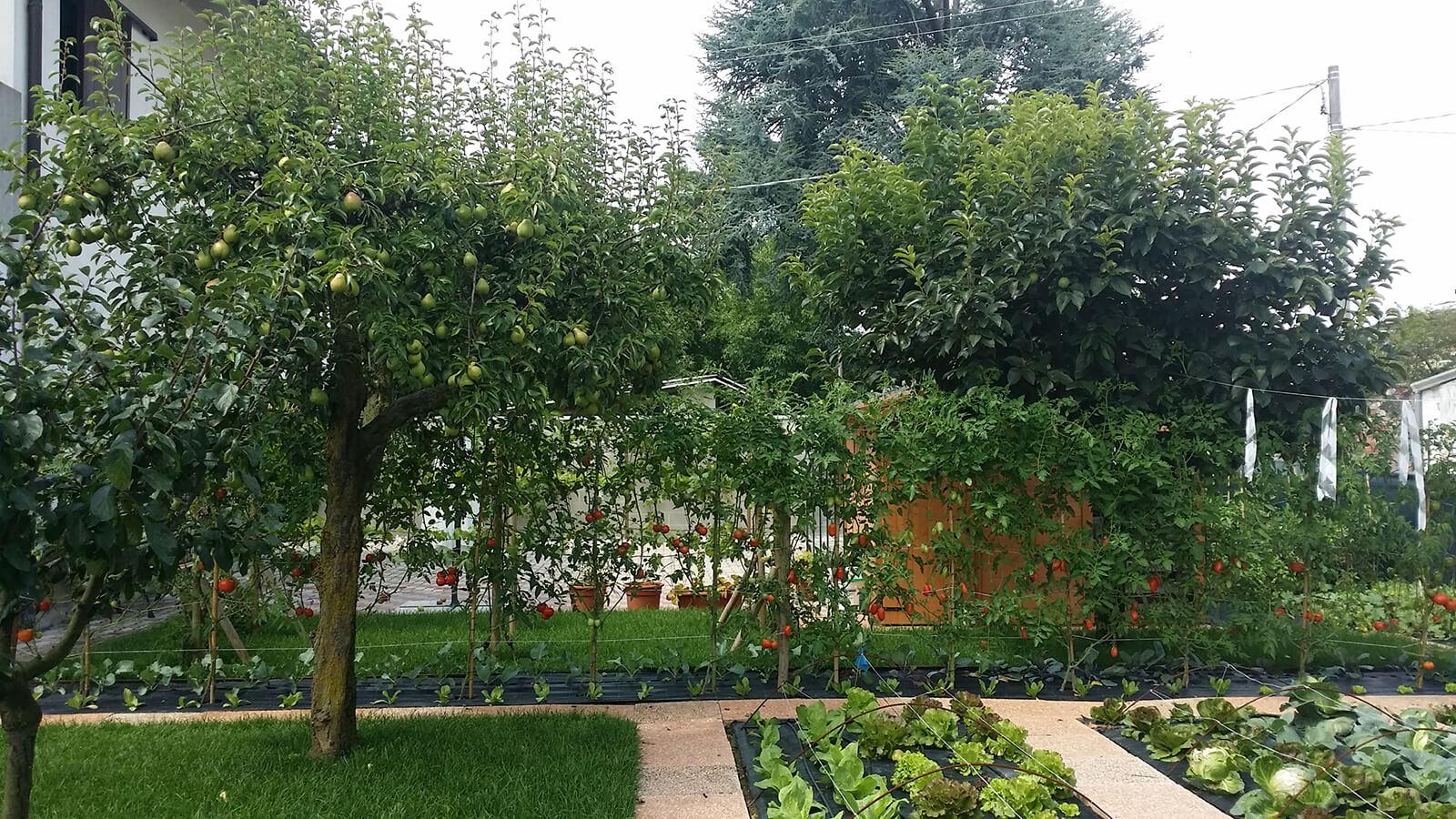 progettazione realizzazione giardini costabissara - verde blu giardini 3