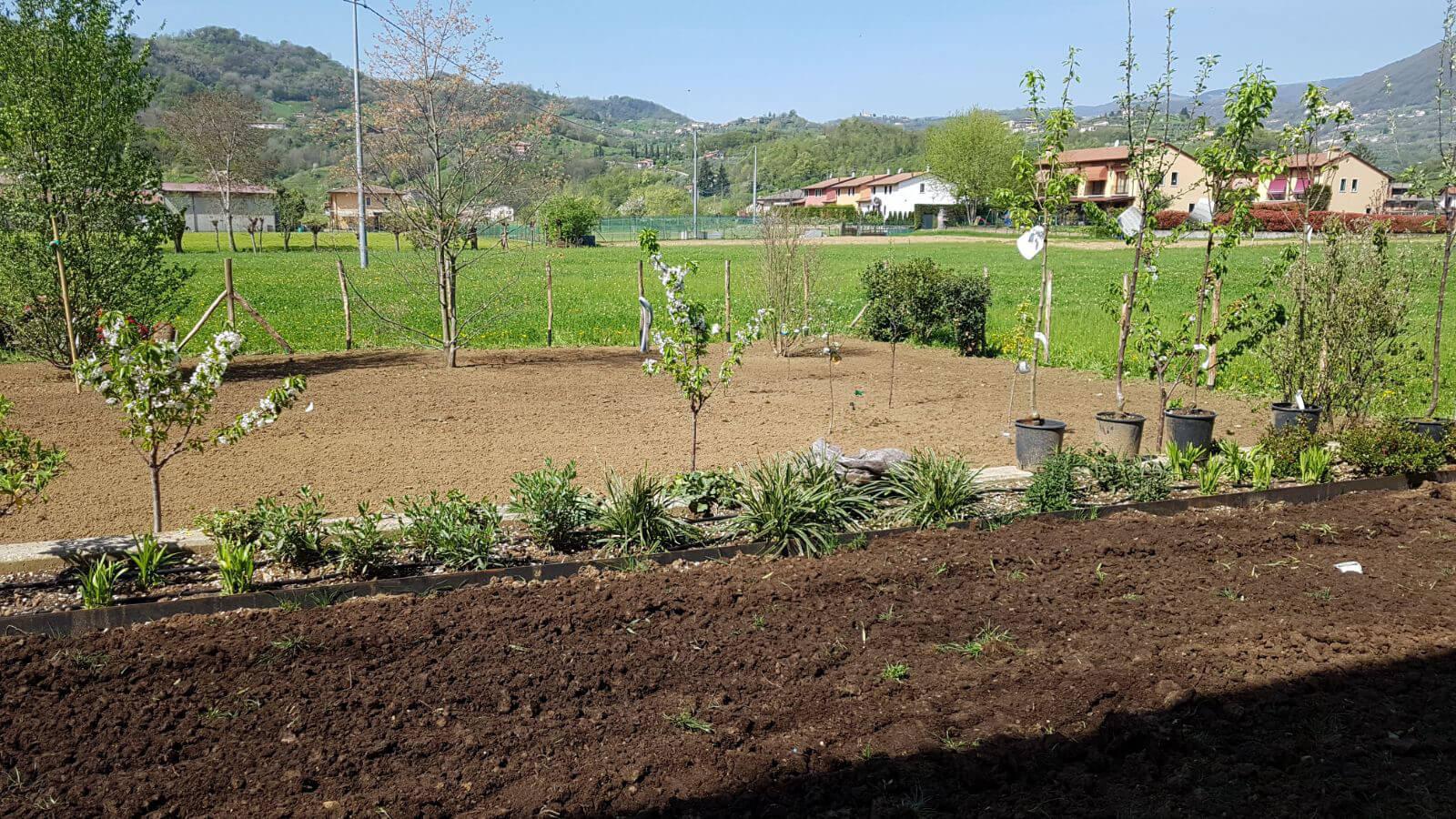 progettazione realizzazione giardini marostica - verde blu giardini 6