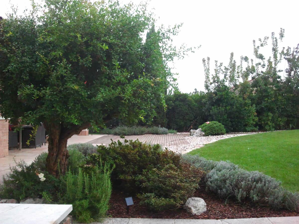 progettazione realizzazione giardini sandrigo - verde blu giardini 2