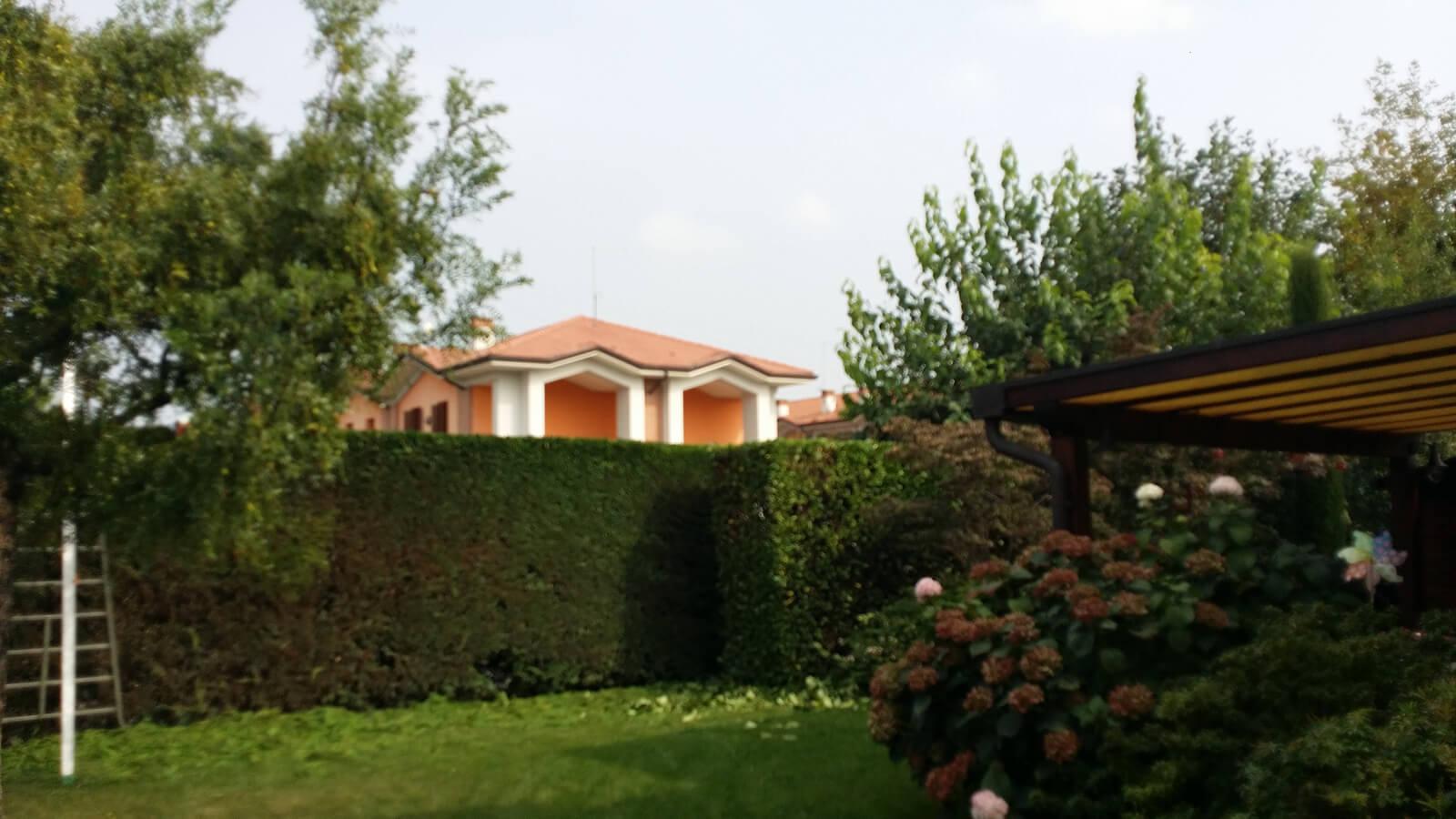 progettazione realizzazione giardini varie - verde blu giardini 1