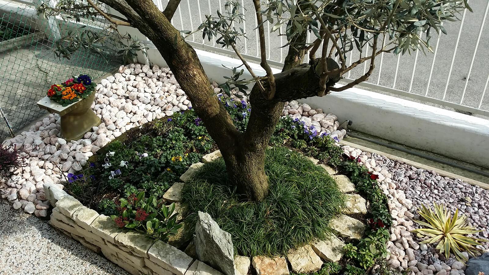 progettazione realizzazione giardini varie - verde blu giardini 3
