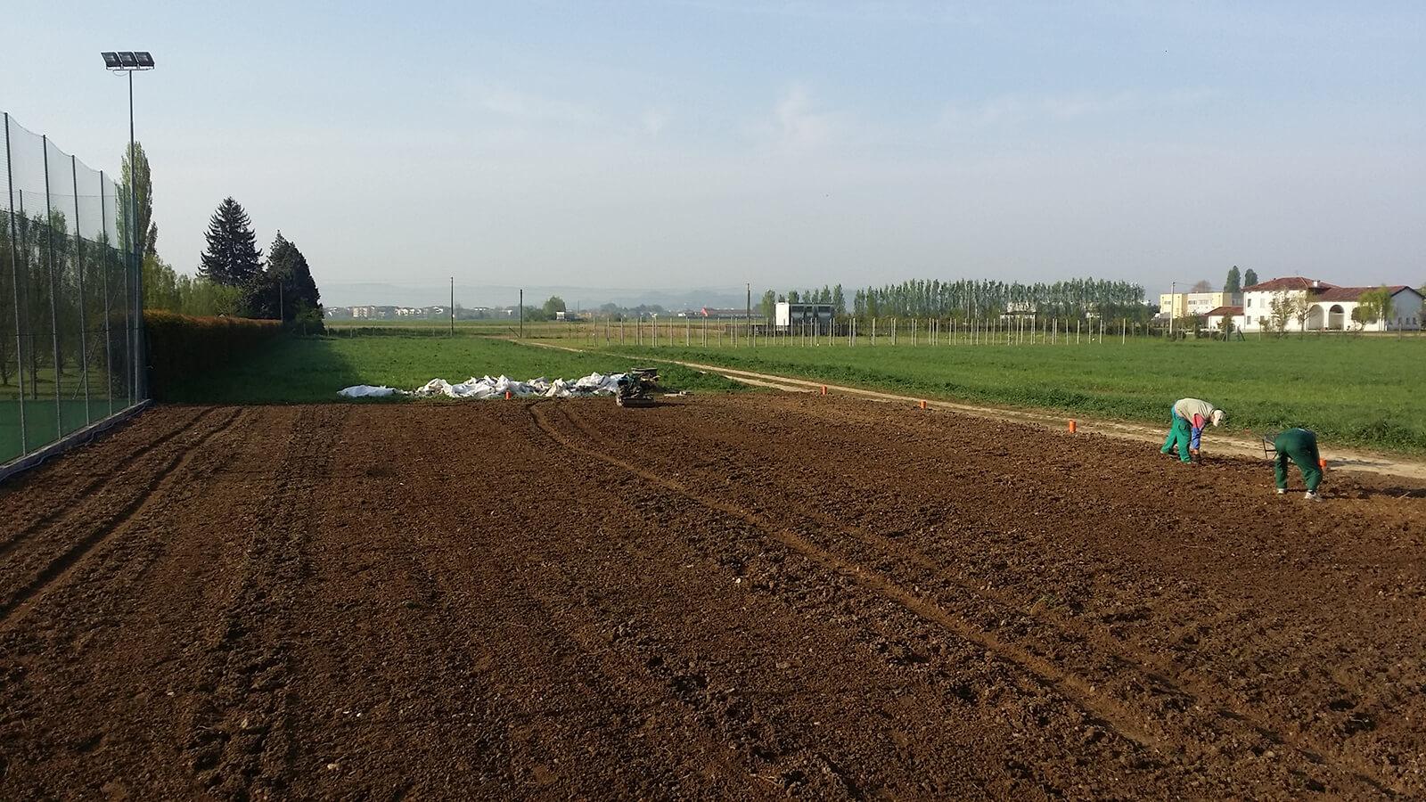 semina e prato in rotolo verde blu 19