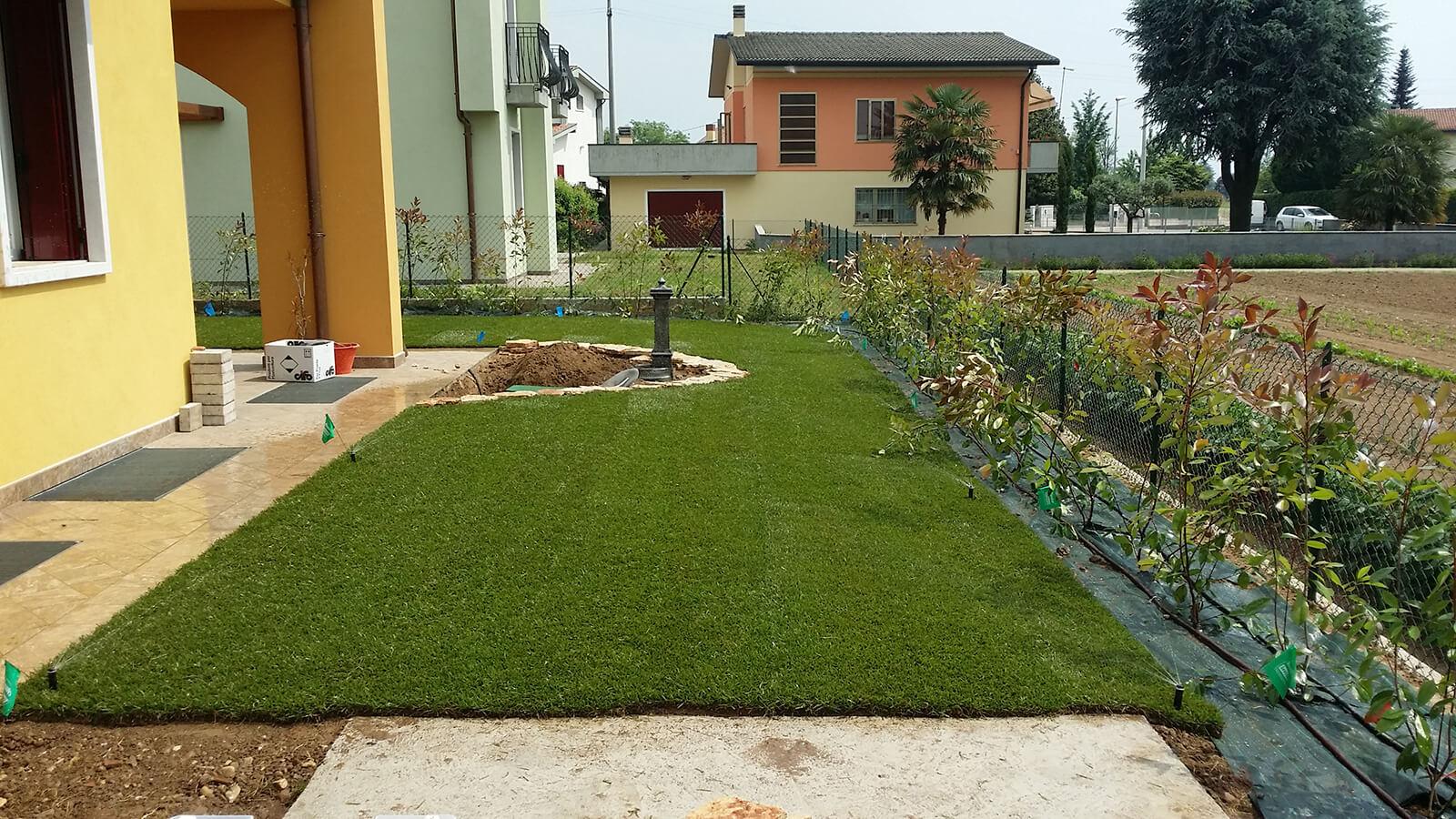 semina e prato in rotolo verde blu 21
