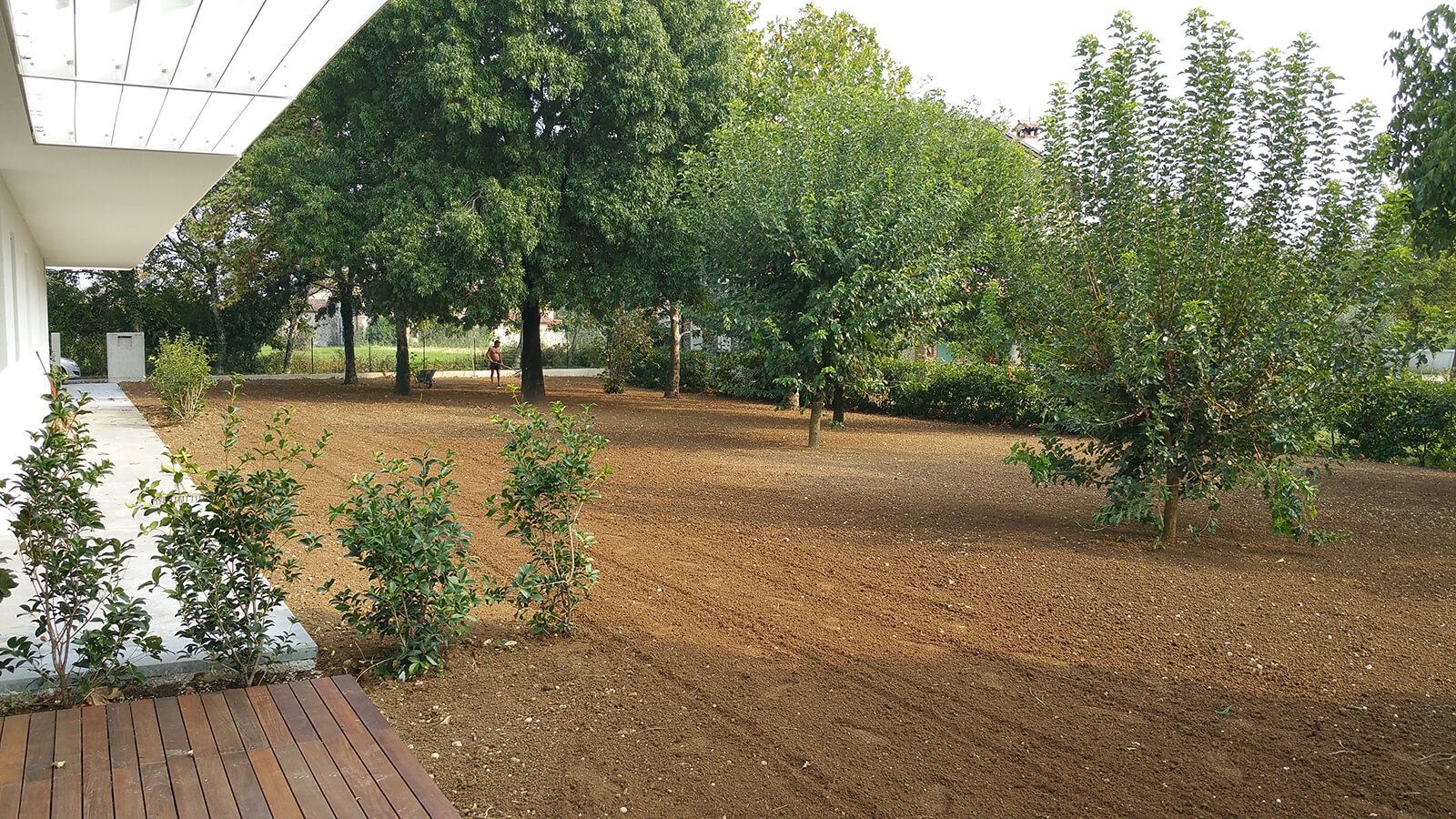 semina e prato in rotolo verde blu 29