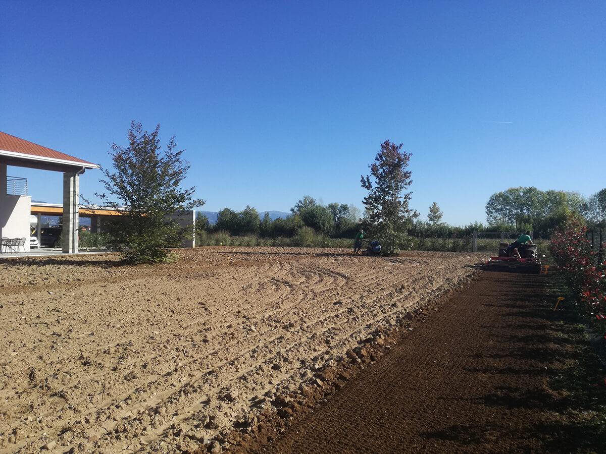semina e prato in rotolo verde blu 42