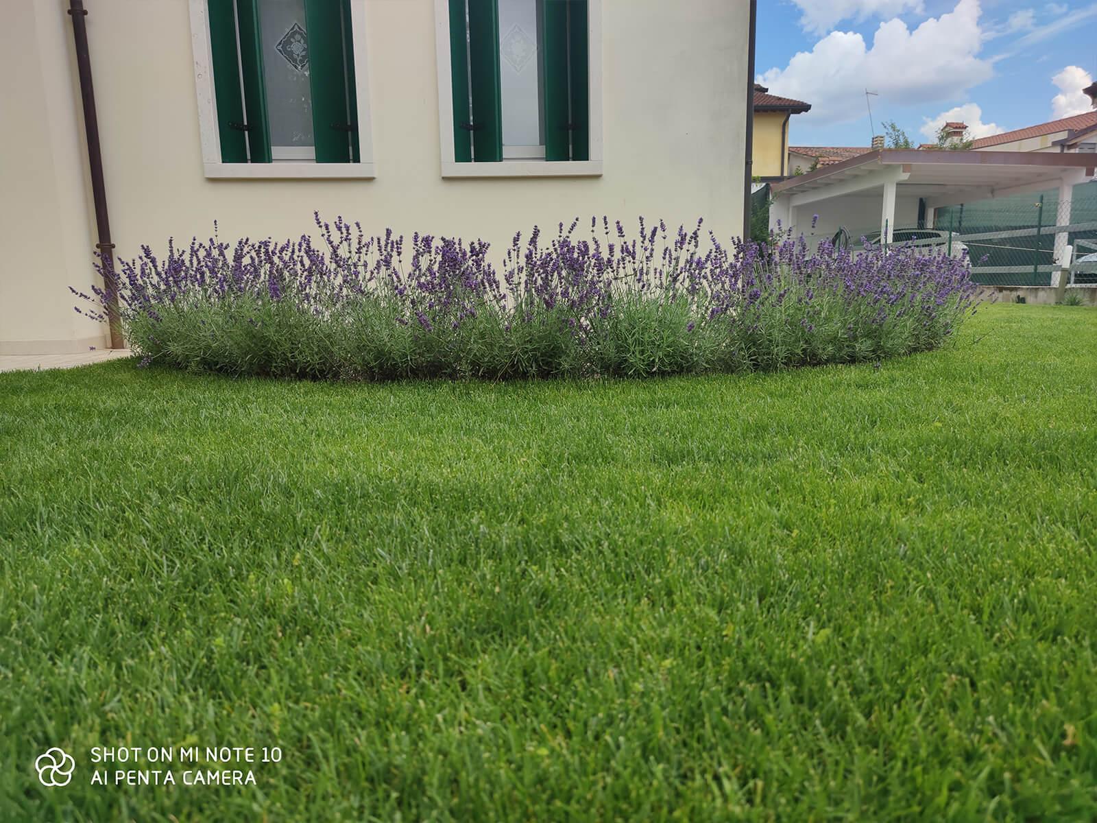 Verdeblu-giardini-progetto29_01