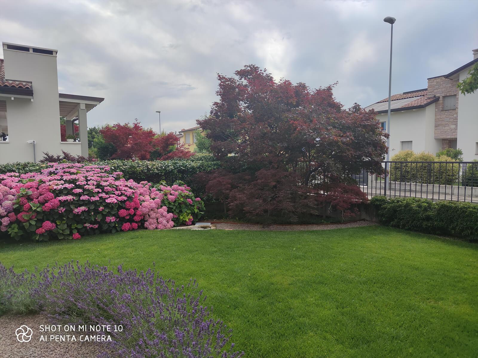 Verdeblu-giardini-progetto29_09