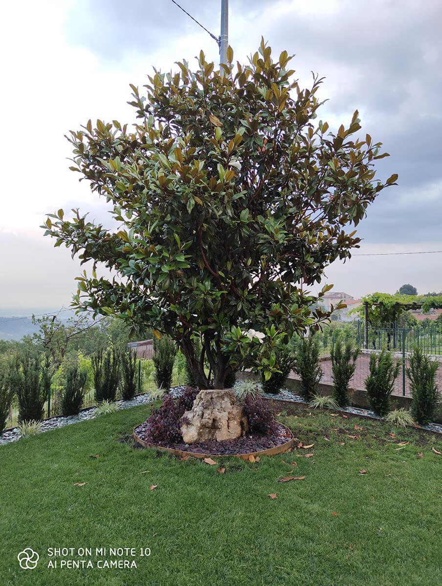 Verdeblu-giardini-progetto30_02